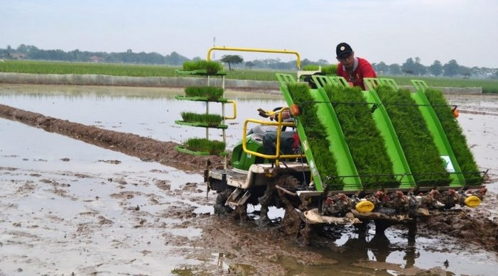 inovasi pertanian